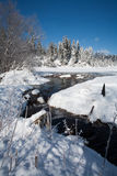 καλυμμένο χιόνι πεδίων κολπίσκου Στοκ Φωτογραφίες