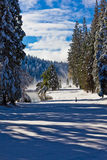 καλυμμένο χιόνι στενών διόδ& Στοκ φωτογραφία με δικαίωμα ελεύθερης χρήσης