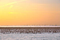 καλυμμένο χιόνι τοπίων πεδί& Στοκ Εικόνες