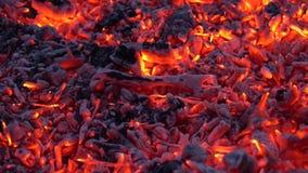 Καλός άνετος ικανοποιώντας στενός επάνω πυροβολισμός του ξυλάνθρακα που καίγεται με το ζωηρόχρωμο πορτοκαλί φως στην εστία φλογών απόθεμα βίντεο
