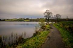 Καλός περίπατος από τη λίμνη στοκ φωτογραφία με δικαίωμα ελεύθερης χρήσης