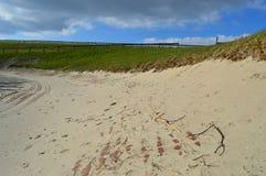 Καλό απόγευμα το φθινόπωρο Άποψη πέρα από το νερό, το IJsselmeer στοκ εικόνα με δικαίωμα ελεύθερης χρήσης