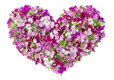 καλό ροζ καρδιών κοριτσιών έννοιας floral Στοκ φωτογραφία με δικαίωμα ελεύθερης χρήσης