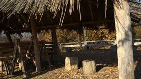 Καλύβα στο δάσος φθινοπώρου απόθεμα βίντεο