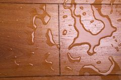 καλύπτοντας το ύδωρ ξύλιν&omic στοκ εικόνες με δικαίωμα ελεύθερης χρήσης