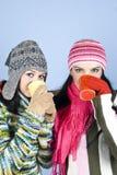 καλύτερα κορίτσια φίλων π&o Στοκ Φωτογραφίες