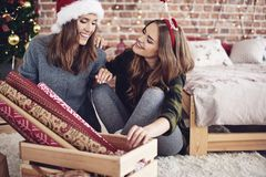 Καλύτεροι φίλοι κατά τη διάρκεια του χρόνου Χριστουγέννων Στοκ φωτογραφία με δικαίωμα ελεύθερης χρήσης