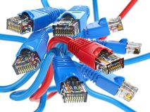 Καλώδια του τοπικού LAN δικτύων υπολογιστών rj45 Επιλογή συνδέσεων στο Διαδίκτυο Στοκ φωτογραφία με δικαίωμα ελεύθερης χρήσης