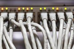 Καλώδια Ethernet που συνδέονται με το διακόπτη Στοκ φωτογραφίες με δικαίωμα ελεύθερης χρήσης