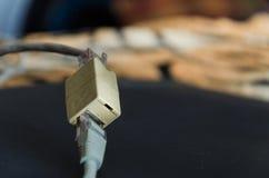 Καλώδια Ethernet που συνδέονται Στοκ Εικόνα