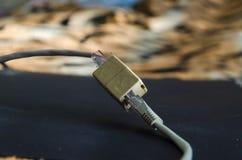 Καλώδια Ethernet που συνδέονται Στοκ Εικόνες