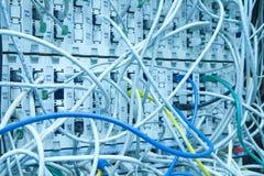 καλώδια ethernet Στοκ φωτογραφία με δικαίωμα ελεύθερης χρήσης