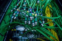 Καλώδιο ομιλητών, οπτική διεπαφή συνδετήρων server Ηχητικό σύστημα, υγιές καλώδιο στο στούντιο στο βούλωμα καλώδια που συνδέονται Στοκ Εικόνες