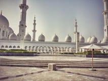 Καμήλα Kamel Στοκ Φωτογραφίες