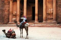 Καμήλες μπροστά από το Al Khazneh, Petra στοκ εικόνες