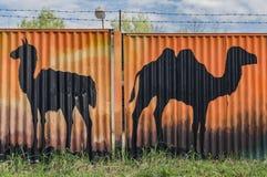 Καμήλες που χρωματίζονται στο φράκτη στην πόλη Hodonin στοκ φωτογραφία
