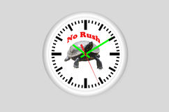 Καμία βιασύνη, ρολόι χελωνών Στοκ Φωτογραφία