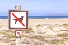 Καμία σκυλί και πυρά προσκόπων στην παραλία δεν υπογράφουν Στοκ εικόνα με δικαίωμα ελεύθερης χρήσης