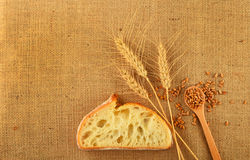 Καμβάς με τα αυτιά σίτου, το ψωμί και τα ώριμα σιτάρια Στοκ Εικόνες