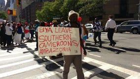 Καμερούν, νότιοι διαμαρτυρόμενοι Cameroons/Ambazonia, NYC, Νέα Υόρκη, ΗΠΑ Στοκ Φωτογραφίες