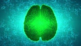 Καμμένος πράσινος εγκέφαλος που συνδέεται με καλώδιο στη νευρική επιφάνεια ή τους ηλεκτρονικούς αγωγούς ελεύθερη απεικόνιση δικαιώματος