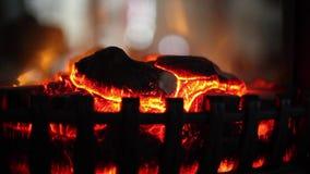 Καμμένος πυρκαγιά σε μια εστία Πλάγια όψη Όμορφη ηλεκτρική εστία εσωτερικός καναπές εικόνων σχεδίου έννοιας Πλάγια όψη απόθεμα βίντεο