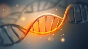 Καμμένος σκέλος DNA διανυσματική απεικόνιση