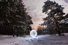 Καμμένος σφαίρα στο δάσος χειμερινών πεύκων Στοκ Φωτογραφίες