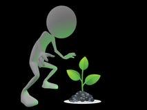 καμμένος φυτό Στοκ φωτογραφία με δικαίωμα ελεύθερης χρήσης
