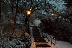 Καμμένος φωτεινοί σηματοδότες στο χειμερινό πάρκο στοκ φωτογραφία με δικαίωμα ελεύθερης χρήσης