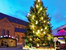 Καμμένος χριστουγεννιάτικο δέντρο στο τετράγωνο θόλων στην παλαιά Ρήγα Στοκ εικόνες με δικαίωμα ελεύθερης χρήσης