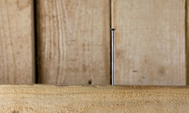 Καμμμένο καρφί στο ξύλο Στοκ φωτογραφία με δικαίωμα ελεύθερης χρήσης