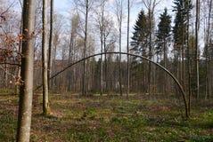 Καμμμένο, κυρτό δέντρο Στοκ φωτογραφίες με δικαίωμα ελεύθερης χρήσης