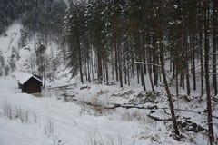 Καμπίνα κούτσουρων στη μέση του πουθενά Στοκ φωτογραφία με δικαίωμα ελεύθερης χρήσης