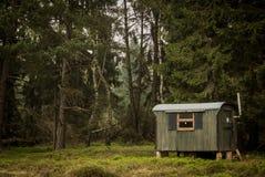 Καμπίνα στα σκοτεινά ξύλα στοκ φωτογραφία με δικαίωμα ελεύθερης χρήσης