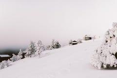 Καμπίνα στο δάσος Στοκ φωτογραφία με δικαίωμα ελεύθερης χρήσης