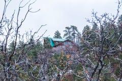 Καμπίνα στο παχύ δάσος Στοκ Εικόνες