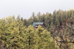Καμπίνα στο πυκνό δάσος Στοκ Φωτογραφίες