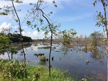 Καμπότζη Καμπότζη στοκ φωτογραφία με δικαίωμα ελεύθερης χρήσης