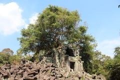 Καμπότζη Ναός Mealea Beng Το Siem συγκεντρώνει την επαρχία Το Siem συγκεντρώνει την πόλη Στοκ φωτογραφία με δικαίωμα ελεύθερης χρήσης