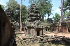Καμπότζη Ναός TA Prohm Το Siem συγκεντρώνει την επαρχία Το Siem συγκεντρώνει την πόλη Στοκ Εικόνα