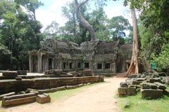 Καμπότζη Ναός TA Prohm Το Siem συγκεντρώνει την επαρχία Το Siem συγκεντρώνει την πόλη Στοκ Εικόνες