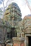 Καμπότζη, Angkor †«TA Prohm Στοκ φωτογραφίες με δικαίωμα ελεύθερης χρήσης