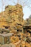 Καμπότζη, Angkor †«TA Prohm Στοκ Εικόνες