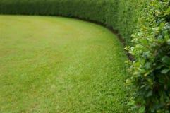 Καμπύλη της πράσινης έννοιας υποβάθρου Στοκ Εικόνες
