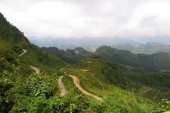 Καμπύλες μεταξύ των ricefields στο Βιετνάμ, εκτάριο Giang Στοκ Φωτογραφία