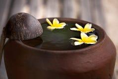 Κανάτα αργίλου με το plumeria λουλουδιών ή frangipani που διακοσμείται στο νερό Κύπελλο στο ύφος zen για τη διάθεση περισυλλογής  Στοκ Εικόνες