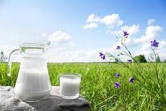 Κανάτα γυαλιού με το γάλα και ένα γυαλί στη χλόη ενάντια σε ένα σκηνικό των γραφικών πράσινων λιβαδιών με τα λουλούδια Στοκ φωτογραφία με δικαίωμα ελεύθερης χρήσης