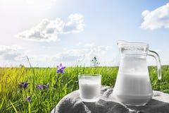 Κανάτα γυαλιού με το γάλα και ένα γυαλί στη χλόη ενάντια σε ένα σκηνικό των γραφικών πράσινων λιβαδιών με τα λουλούδια στο σαφές  Στοκ Εικόνα