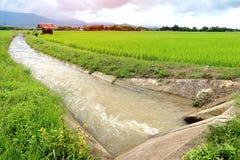 Κανάλι νερού άρδευσης για τον τομέα ρυζιού ορυζώνα Στοκ εικόνες με δικαίωμα ελεύθερης χρήσης
